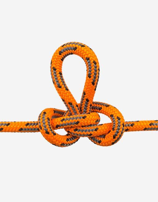 donaghys cougar orange image